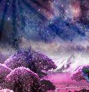 Сонник по цветам толкование снов по цветам